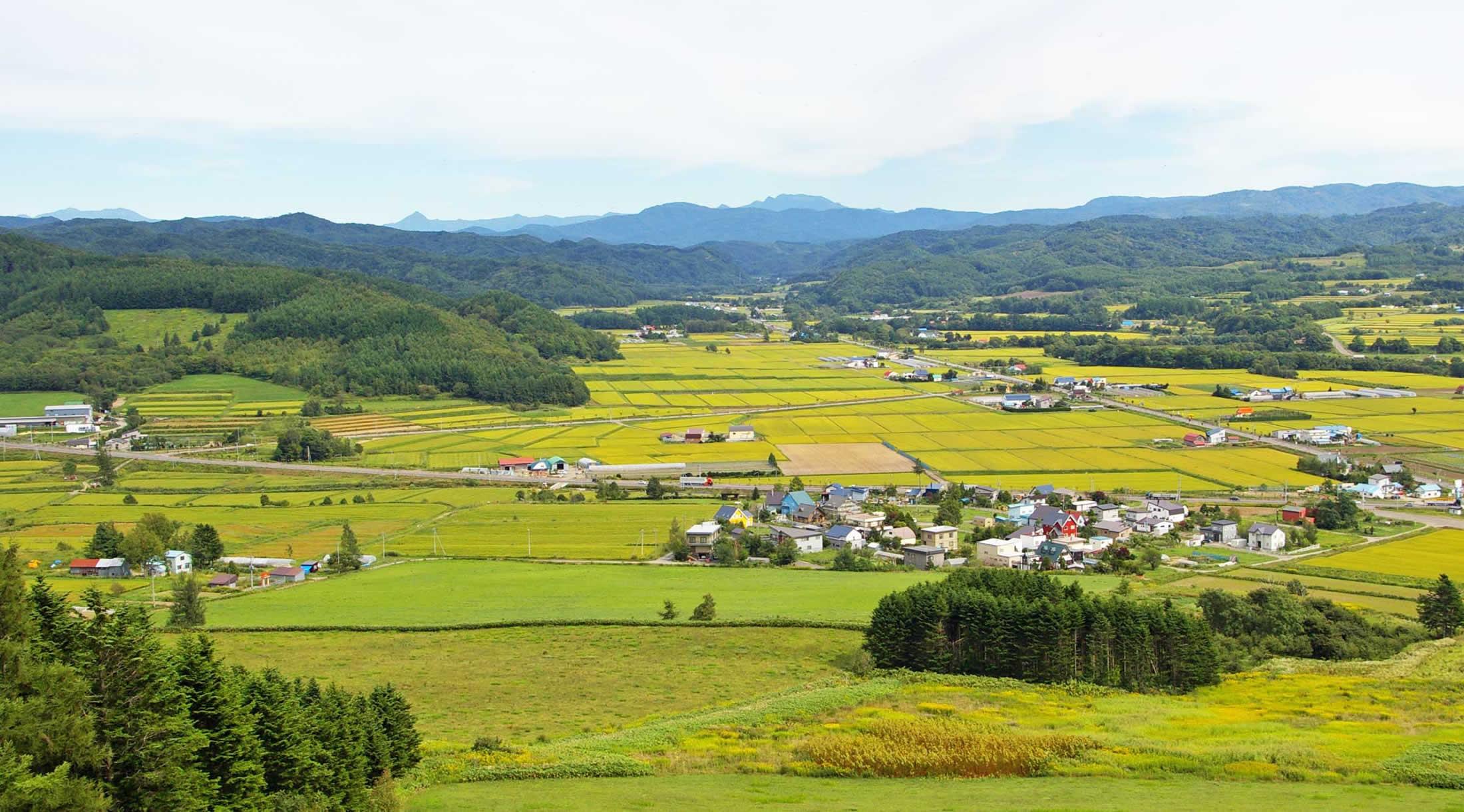 岩見沢市田園風景